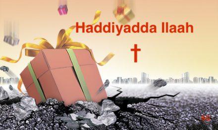 Haddiyadda xaqnimada iyo nolosha daa'mka ah