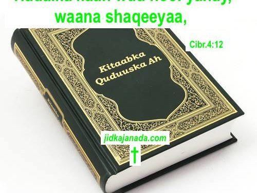 Erayga Ilaah Kitaabka Qudduuska (Bible)