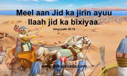 Meel aan jid ka jirin ayuu Ilaah jid ka bixiyaa.