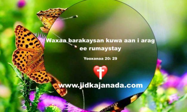 Waxaa barakeeysan kuwa aan Masiixa arag haddana rumeeyey.